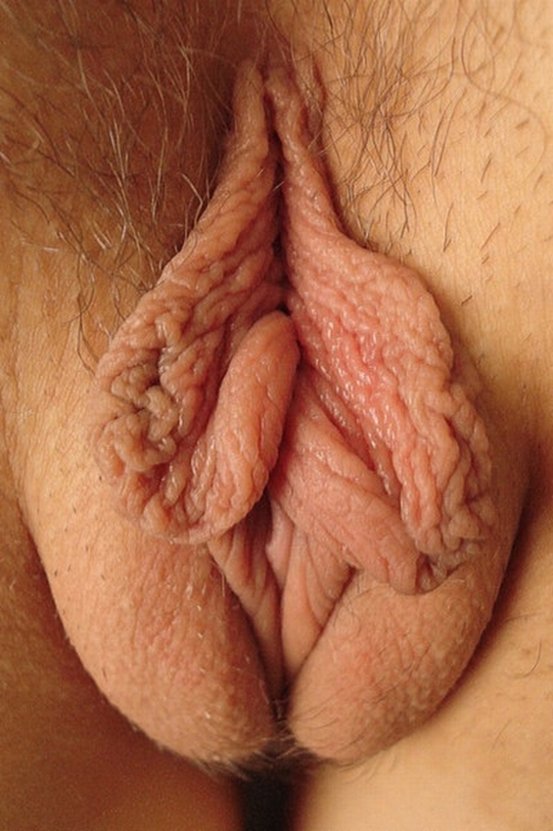 Best close up pussy pics — img 9